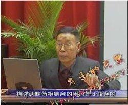 中医诊断学教学视频_成都中医药大学邓中甲教授主讲《方剂学》视频下载,医学视频下载
