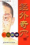 经外奇穴彩色图谱.pdf