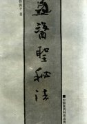 医圣秘法(路振平).pdf