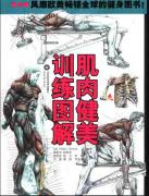 2005 肌肉健美训练图解-(法)德拉威尔 李振华
