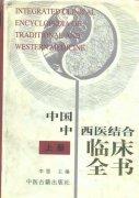 中国中西医结合临床全书 (上、下册)
