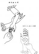 掌纹诊病全书(李群堂)
