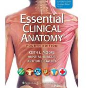 临床解剖学精要