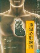 重温心脏解剖.pdf